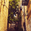 Street In Dubrovnik Old Town by Sandra Rugina