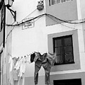 street in Porto with hanging clothes by Eazudesign