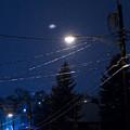 Streetlight  by John Toxey