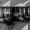Streets Of Cesena 2  by Andrea Mazzocchetti