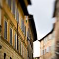 Streets Of Siena by Marilyn Hunt
