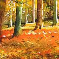 Strid Wood by Paul Dene Marlor
