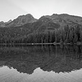 String Lake Reflections Bw by Michael Ver Sprill