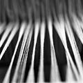 Strings In A Loom by Gaspar Avila