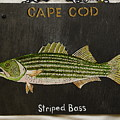 Striped Bass by Jacqueline Del  Fonso