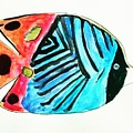 Striped Fish by Amy Anderson