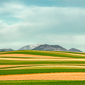 Stripes Of Crops by Todd Klassy