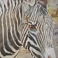 Stripes by Shirley Braithwaite Hunt