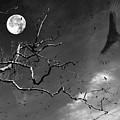 Stroke Of Midnight by Jenny Gandert