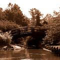 Stroll Garden Bridge by Audrey Venute