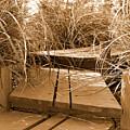 Stroll Garden Walkway by Audrey Venute