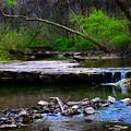 Strolling By The Stream by Kim Blaylock