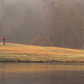 Strolling Thru The Park by Karol Livote