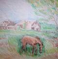 Stroudwater Farm 4 by Joseph Sandora Jr