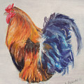 Strutting Rooster by Katherine  Berlin