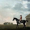 Stubbs: Gimcrack, 1765 by Granger