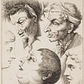 Studies Of Heads Anonimo, Blooteling Abraham by Blooteling Abraham