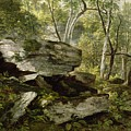 Study From Nature   Rocks And Trees by Asher Brown Durand