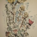 Study Of Flowers O by Edward Wolverton