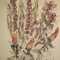 Study Of Flowers S by Edward Wolverton