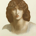 Study Of Jane Morris by Dante Gabriel Rossetti