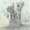 Stump by Karen Miller