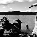 Stump Lake by Tom Melo