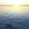 Stunning Eleuthera Sunset 2 by Lora Louise