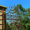 Stunning Garden Gate by Denise Mazzocco