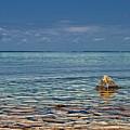 Sturgeon Bay Lake Michigan by Brian Mollenkopf