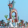 Suan Sawan Golden Dancing Dragon Dthns0144 by Gerry Gantt