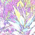 Subtle Leaf by Ian  MacDonald