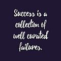 Success Is A Collection Of Well Curated Failures by L Bee