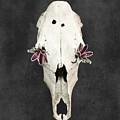 Succulent Flowers And Horse Skull by Di Kerpan