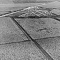Sugar Cane In The Everglades by Underwood & Underwood