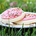 Sugar Cookies With Sprinkles by Linda Woods