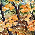 Sugar Maple by Chito Gonzaga