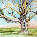 Sugar Maple On Mutton Lane by Kathy Sturr
