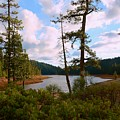 Sugar Pine Lake Trail by Patrick Witz