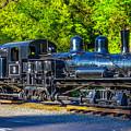 Sugar Pine Railway Train by Garry Gay