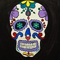 Sugar Skull by Emily Page