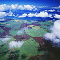 Sugarcane Fields In Central Maui by Ron Dahlquist - Printscapes