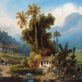 Sugarcane Plantation Of San Esteban Near Puerto Cabello, Venezuela by Ferdinand Bellermann