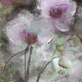 Suggestion Of An Orchid by Susan  Lipschutz
