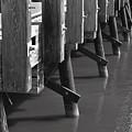 Suicide Bridge  by Lisa Kleiner