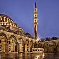 Suleymaniye Mosque by Dorothy Binder