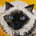 Suli Face by Sharon  De Vore