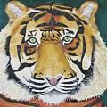 Sumatran Tiger by Karen Desrosiers