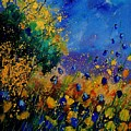 Summer 459090 by Pol Ledent