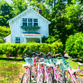 Summer Afternoon In The Hamptons by Stan Dzugan